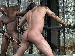A black dude takes the dominant role in this kinky gay bondage scene with another submissive hunk, check it out right here.