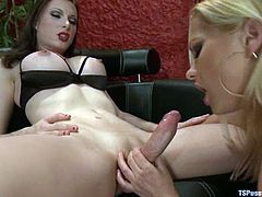 Hot shemale Eva Cassini is having fun with blonde milf Katja Kassin. Katja pleases Eva with a blowjob and then gets fucked in missionary position and doggy style.