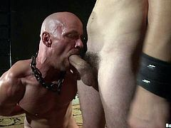 Make sure you watch this bondage gay scene if you're into gay porn. Watch this guy being tied up and forced to suck his master's hard cock.