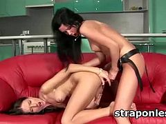 Slim brunette lesbian getting ass smashed with big red strapon