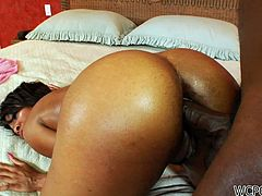 Well, this slender curvy black chick presented in WCP Club sex clip is surely worth checking out. Zealous nympho with nice butt bends over to get her anus drilled tough by black stud right at home.