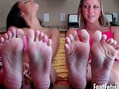 Watch this assortment of blonde, brunette and redhead femmes flaunting their sensual bodies and making you worship their feet. Some of them are even ready to footjob your cock o let you lick their feet.