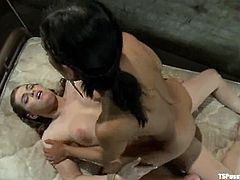 Beretta James Makes Shemale Tiffany Star Cum with Titjob after Sex