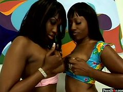 Pornstar sex clip provides you with a really voracious ebony brunettes. Kinky curvy chicks get rid of bikinis and desire to demonstrate their nice boobs and awesome huge asses. I swear man, you'll jizz at once seeing this lesbos posing on cam passionately. So don't waste time and jerk off for delight.
