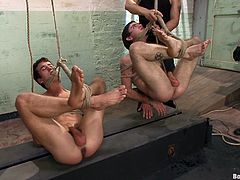 Intense gay bondage scene with three horny fuckers right here, check it out, ropes, muscles and asshole fucking not to mention cock sucking.