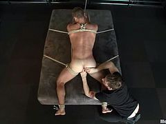 This dude named Landon Conrad gets blindfolded and tied up in the bar. His fucker is the one who gives him some pain that he loves!