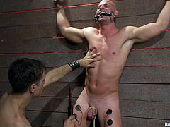 Watch this master eating his slave's asshole before penetrating it with his hard cock in this gay bondage video.