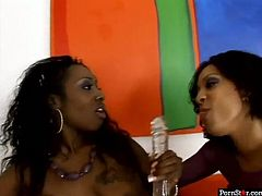 Well, dude, if you wanna jizz at once, this Pornstar sex clip is surely for you. Two horny black ladies go wild. They suck dildos like real dicks and desire to polish each other's wet pussies properly. Ebony lesbos moan and kiss so passionately, that I've already got a boner.