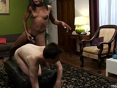 Ash Krosser and Janet Jackme suck each others dicks. After that the guy gets his ass drilled with big transsexual dick.