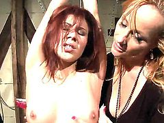 Filthy milf Katy Parker with hot body in sexy black dress enjoys torturing petite tied up redhead babe Patricia Dream with natural boobs and pretty face in kinky bondage fantasy.