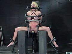 A big titty fucking whore gets tied up and toyed with in this kinky BDSM scene, hit play and fucking check it out, it's amazing!