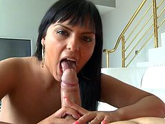 Busty Jasmine Black is eager to rub this penis and have it deep in her mouth