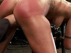 The brunette Micha Moore is getting her twat fist fucked in this video where she's stuck in doggystyle position by a bondage device.