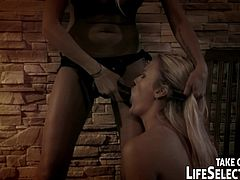 Horny babes are using their strapon to stimulate their needs during hot femdom action
