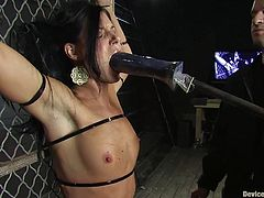 Brunette hotties Brooke Lee Adams and India Summer are having fun in a basement. They get bound and tormented and then eat and rub each other's coochies.