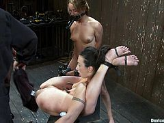 A couple of dirty-ass fucking whores get tied up and fucking abused and toyed with in this kinky bondage scene! Check it out!