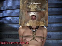 Make sure you check out Kristina Rose in this hardcore BDSM action. She got abused, tortured and spanked for the filthy whore she is!