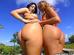Motherfucker has sex with a couple of big booty sluts outdoors in broad daylight, hit play and fucking check it out right here.