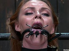 Cute redhead Marie McCray gets her arms locked up and then her tits clamped down with pins in this hot tit torture video. She gets pins clamped to her pubis, above her pussy as well. She's whipped as her mouth is gapped open.