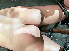 The busty and sexy blonde Aurora Snow is going to endure some pretty rough bondage action and toying in this vid.