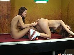 Insatiable brunette lesbians are here to demonstrate you what the real hard sex is. They hammer each other's ruined cunts with dildo in doggy and missionary styles in peppering sex clip by Seventeen Video.