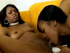 These dark-skinned sluts are more than just good friends. They are lesbians! Hot-tempered girls fuck each other's pussies with dildos until they both cum.