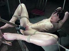 Bonded brunette gets whipped and toyed by blonde