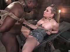 Sexy Aiden Starr toys and humiliates some Black dude