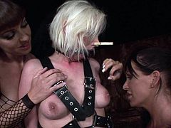 Two rapacious brunette dominas in peppering lingerie and knee high boots give bad times to salty blondie. They bandage her with leather belts and put clothes pegs on her lips and tongue in steamy BDSM-involved sex video by 21 Sextury.