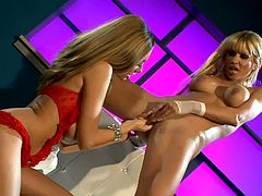 Two delightful blonde girls toy pussies in close-up scenes