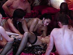 See some hot brunettes, redheads and blondes enjoying lesbian pleasures and playing with toys in the middle of an awesome playboy orgy.