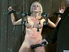 Busty blonde Holly Heart lets some dude put her into irons. Then the dude puts pegs onto Holly's tits and begins to pull the string.