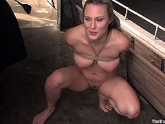 Amazing BDSM threesome with two lusty babes, who love it in a cruel way. Honeys are so damn hungry for each other and for that huge dick!
