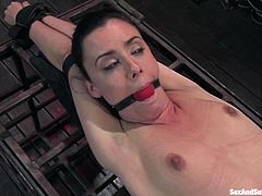 This sassy and horny vixen Mina leigh is being a sex slave that is so loyal to her master. He hogties her and then bends her over to wax her ass and stick his cock in her snatch!