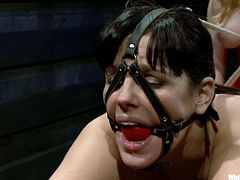 Watching how girl is torturing the other sexy girl is so good. SO Bobbi gets hogtied and suspended up, getting her ass slapped by Aiden!