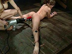 This very hot femdom video has BDSM stuff, some torture too, and wicked toying action with several different toys.