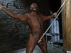 This big black guy will be dominated by a white nurse who will torture his cock and balls, face sit him and cock ride him when he's tied.