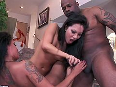 Dude, don't pass by this steamy 21 Sextury threesome xxx clip. Gorgeous Asian slut Asa and kinky black nympho Skin suck a strong black cock and wanna get their wet pussies pounded hard in return.
