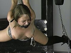 Alluring babe goes nasty during hot and unique BDSM porn session