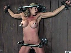 Felony was a bad slut so we decided that's a good idea to give her a lesson. Our executor immobilized this whore with metal bondage devices and held her body on the wall. Then, he used clamps for her hard nipples, whipped her and applied a vibrator for her snatch. Yeah, she's in pain and loves it!