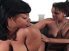 Two British chubby black ebony ladies share a cock