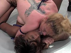 Two naked fucking whores wrestle naked and the winner gets to humiliate the loser, check it out right here, it's fucking hot!