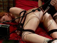 There's anal and pussy toying for Brooklyn Lee in this lesbian femdom where she ends up enjoying it quite a lot actually.