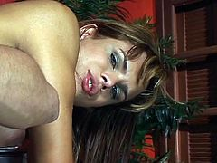 Busty tranny drilled in her filthy ass as she rides on that hard cock shamelessly inside her wet anal hole. She enjoys that ramming that she gets from her horny man today.