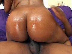 Don't miss a chance to gain delight along with impressive Pornstar threesome sex clip. Booty and buxom black nympho gets absorbed with sucking one black cock for sperm while the other dude eats her wet juicy pussy on the small couch.
