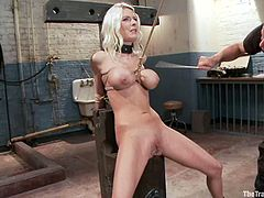 Stunning Riley Evans strips her clothes off and gets her tits twisted with ropes. After that she lies down and gets her vagina toyed with a vibrator.