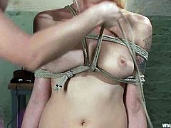 BDSM lesbian pleasures with two naughty chicks. Lorelei Lee enjoys being dominated by Matiresse Madeline and getting suspended by her. She had never felt so much pain before!