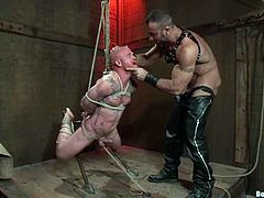 It's a crazy gay BDSM video with extreme bondage action. The tied up dude is also getting ass fucked by the dominant one.