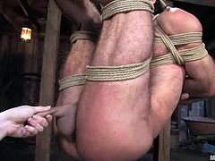 A guy called Totaleurosex is having fun with Claire Adams in a basement. He lets the dominatrix tie him up and then enjoys being tormented and humiliated.