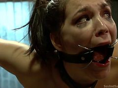 Holly Michaels gets her arms spread with rope and her chest, and legs, are bound with belts. She has metal clamps in her mouth, to stretch it open. Her lips are in extreme pain. Her master licks her ass and then, fucks her from behind.